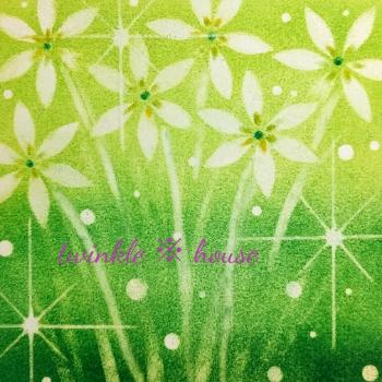 19-02-02-10-31-タマスダレ_350x350.jpg